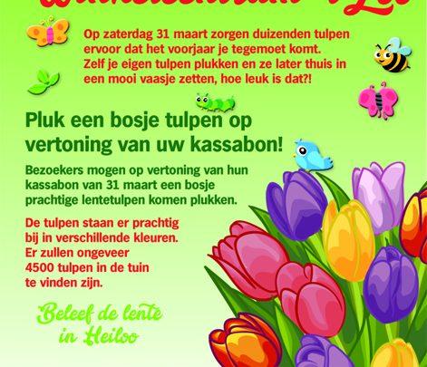 Tulpen bij 't Loo